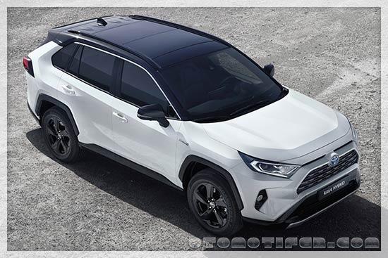Gambar Toyota RAV42019